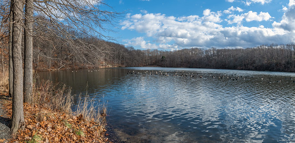 Hook's Creek Lake Panorama