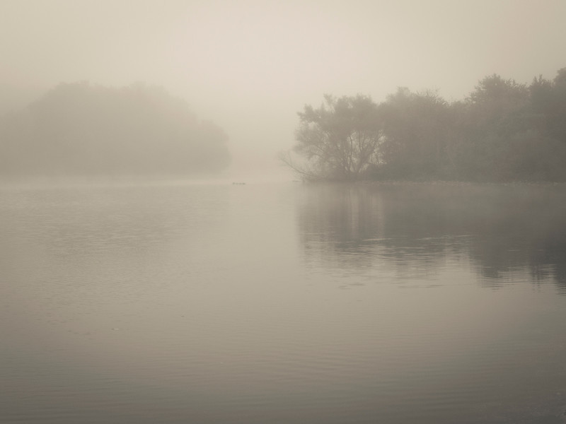"""""""Misty Lake at Dawn""""<br /> <br /> A thick early morning fog on this lake in Turkey Swamp Park, part of the Monmouth County Park system in New Jersey."""