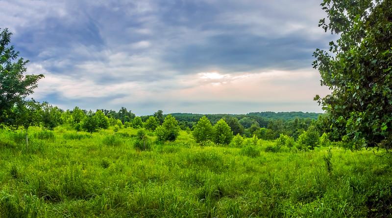 Susquehanna Field Panorama