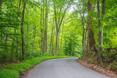 Road Through Susquehanna