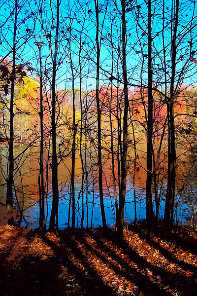 """""""Thru Trees"""" Saturated color Autumn scene, duck pond, Manalapan, New Jersey."""
