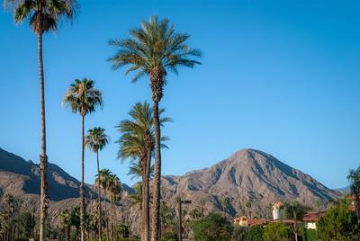 California Beauty