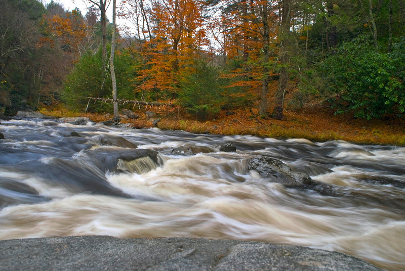 """Autumn Bushkill Creek""<br /> A fast moving stream in the Autumn woods of the Pocono Mountains of Pennsylvania."