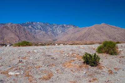 Stark Desert Landscape
