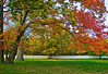 """""""Rural Autumn""""<br /> An Autumn scene with a white picket fence in Freehold, New Jersey."""