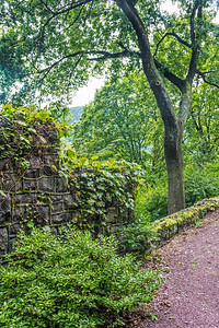 Park Wall Jim Thorpe