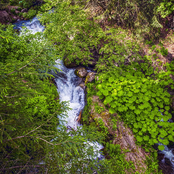 Greens and Streams