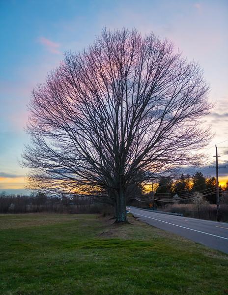 Sunset Along Rt 520