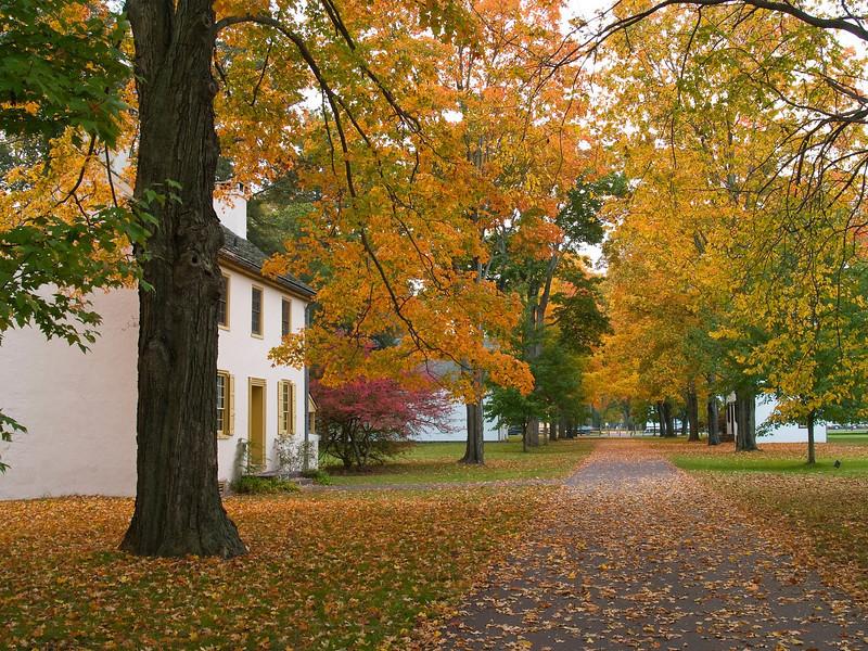AutumnVillage