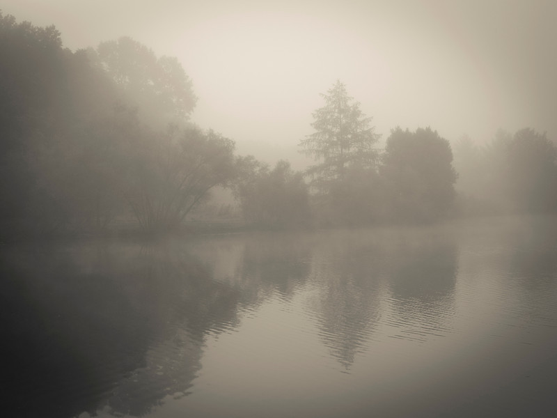 """""""Misty Morning Lake"""" <br /> A thick early morning fog on this lake in Turkey Swamp Park, part of the Monmouth County Park system in New Jersey."""