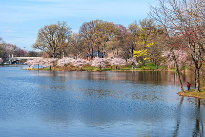 Spring Day in the Park