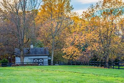 Late Autumn Field