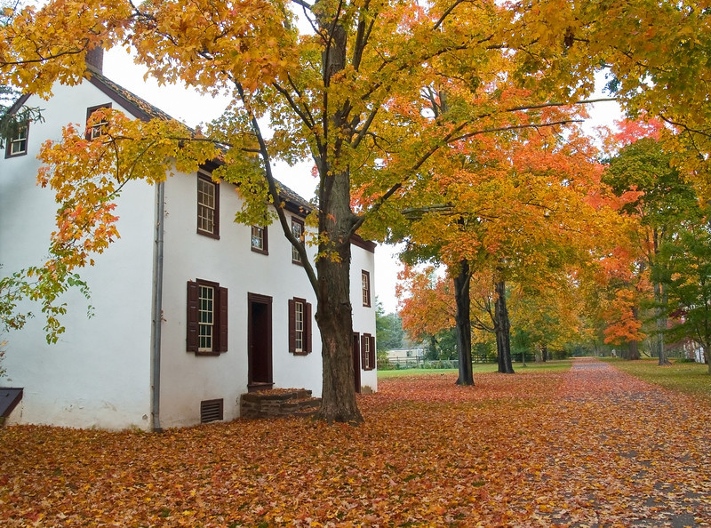 AutumnCrossing
