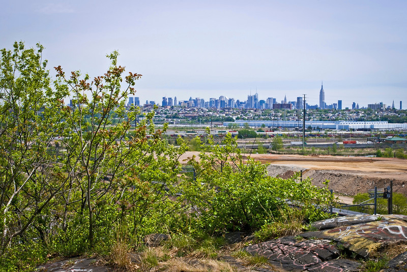"""""""NYC View From Snake Hill""""<br /> A view of the NYC skyline as seen from the top of Snake Hill."""
