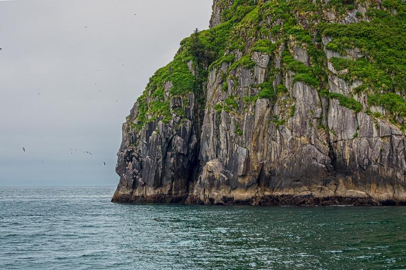 Rock on Resurrection Bay