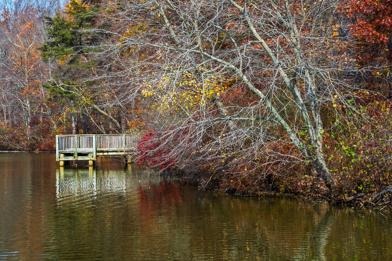 Autumn Lake and Dock