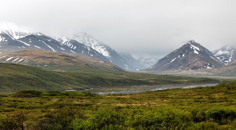 Misty Denali Range