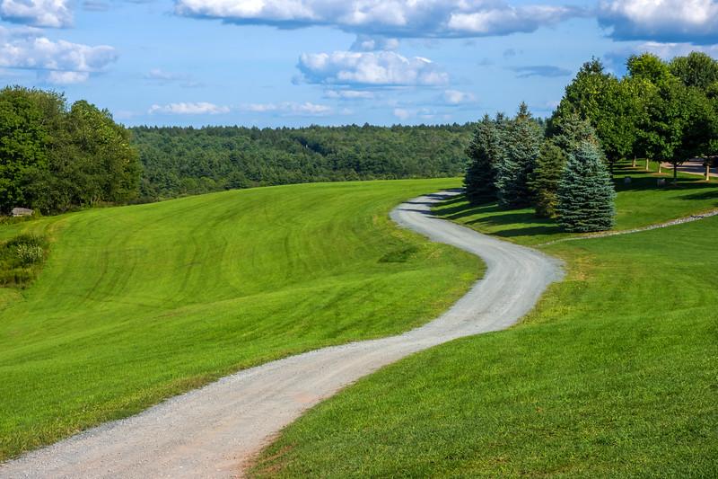 Winding Road Bethal Woods