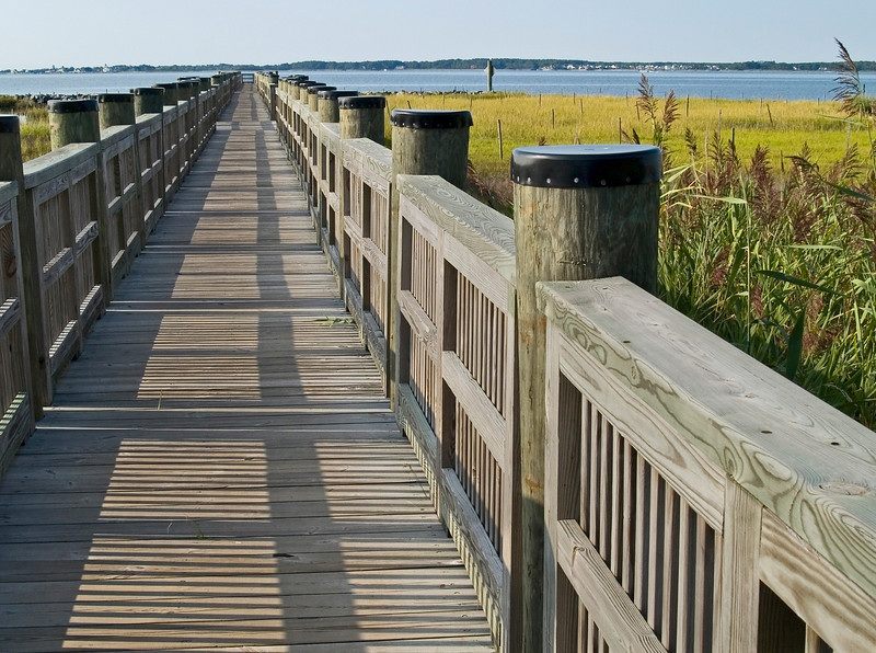 """""""Walkway in Marsh""""<br /> A long dong stretching out into the wetlands in Ocean City, Maryland."""