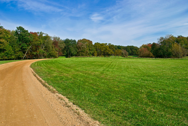 """""""Field and Trail"""" 2011<br /> <br /> Blue skies, green grass and a dirt road, early Autumn in Central New Jersey."""
