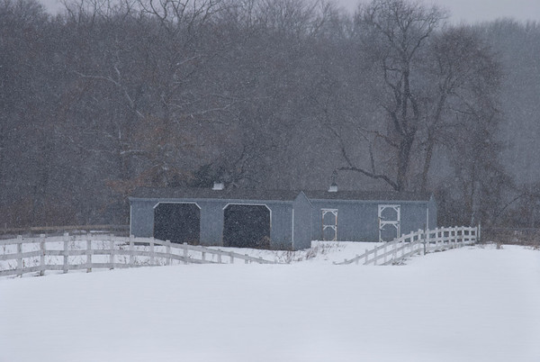 """""""Blue Barn and Snow""""<br /> <br /> A rural Winter scene in Wall New Jersey during a heavy snow storm."""