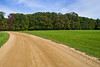 """""""Curved Trail"""" 2011<br /> <br /> Blue skies, green grass and a dirt road, early Autumn in Central New Jersey."""
