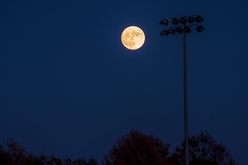 Super Moon and Field