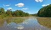 Shallow Pond Panorama