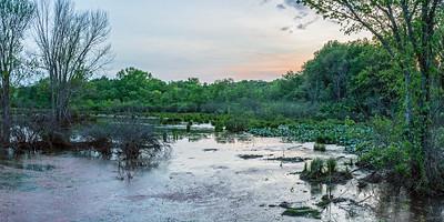 Wetland Panorama at Dusk