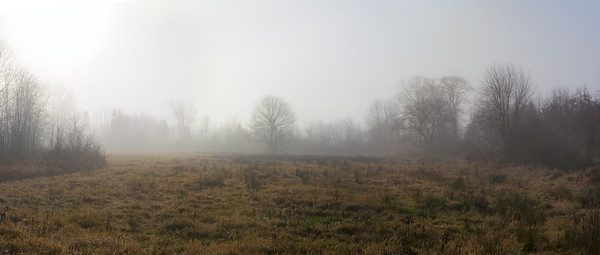 Morning Fog Panorama