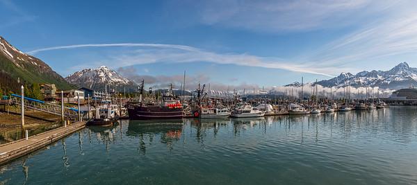 Seward Panorama