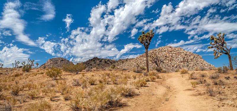 Stone Desert Panorama