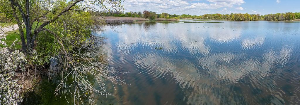 Spring Shoreline Panorama