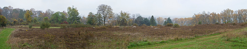 Baldpate Mountain Plateau