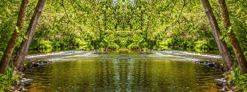 Green Woodlands Stream