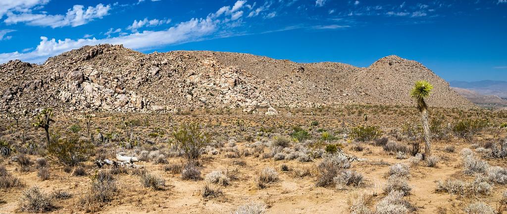 """""""Stone Desert Landscape"""" 2009"""