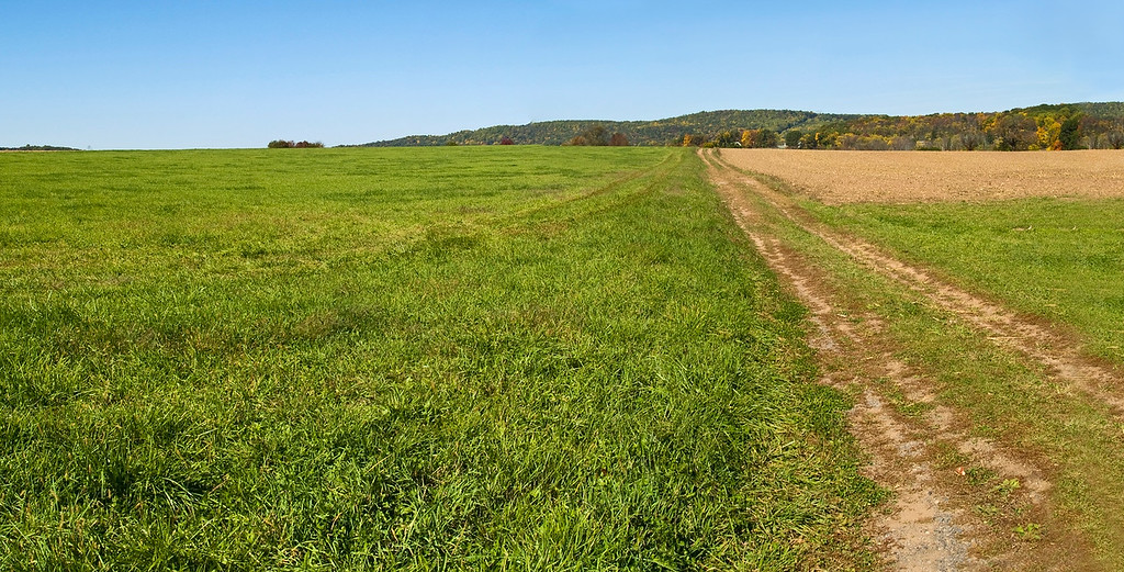 Farm Road Panorama