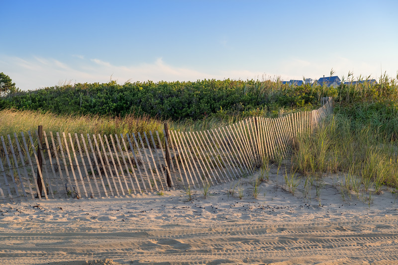 Fence Along the Dunes