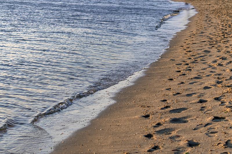 Footprints on Shoreline