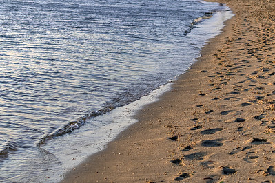 Footprints on Shoreline