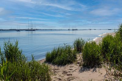 Sailboats on Bay