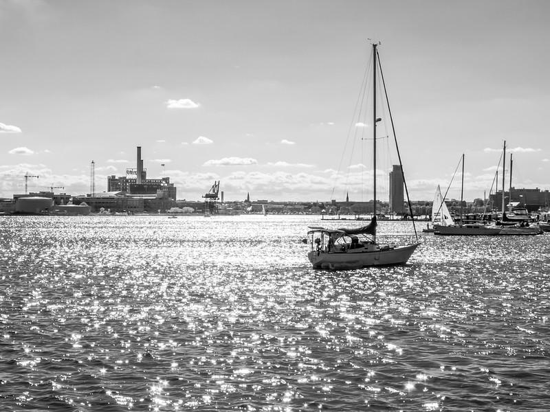 Baltimore Harbor Black and White
