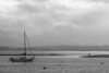 Cape Cod Seascape BW