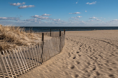 Protected Dunes