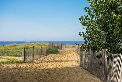 The Trail to the Beach