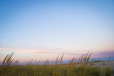 """Beach Meadow"" Sea grass along the dunes just before sunset on Sandy Hook along the Jersey shore."