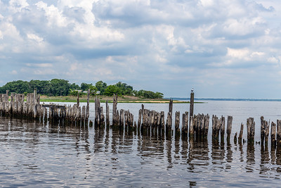 Pilings on the Bay