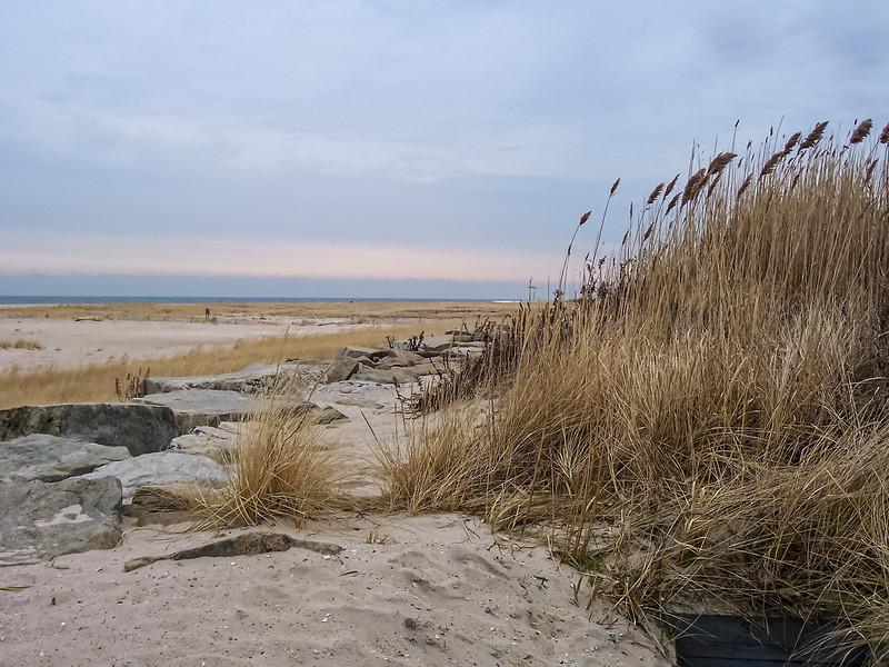 Sandy Hook Meadow
