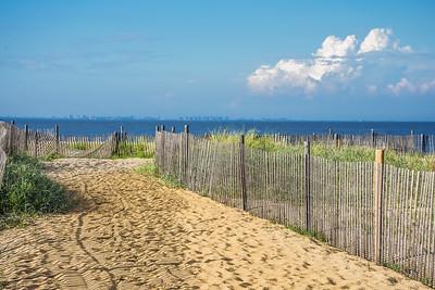 Fence Along the Shore