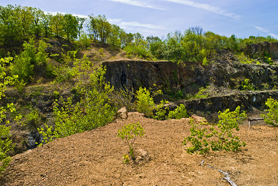 """""""Snake Hill Topography"""" The interesting landscape of Snake Hill at Hudson County Park at Laural Hill, in Secaucus, NJ."""